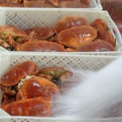 Glacage des tourteaux cuits après refroidissement