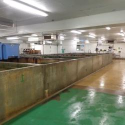 Stockage des crustacés